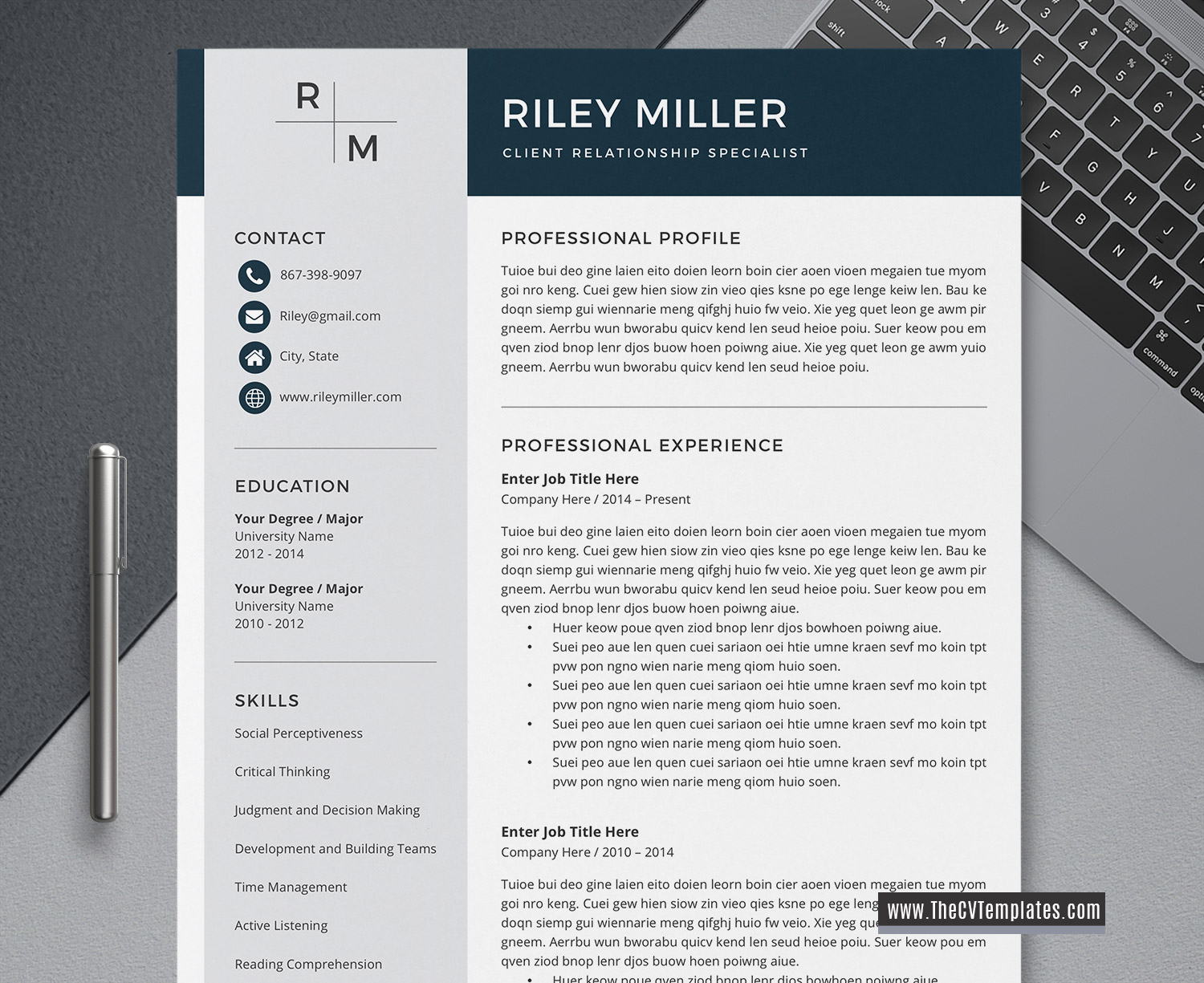 2020 professional cv template for word  unique cv format